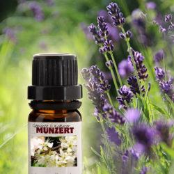 Ätherisches Öl Lavendel von Gewürzversand Munzert