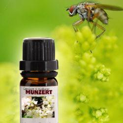 Ätherisches Öl Spezialmischung Anti Insekt von Gewürzversand Munzert