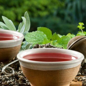 Rotbusch-Tee Ananas