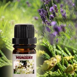Ätherisches Öl Spezialmischung Cedernholz Lavendel von Gewürzversand Munzert