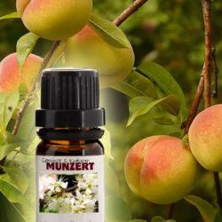 Duftöl Pfirsich von Gewürzversand Munzert