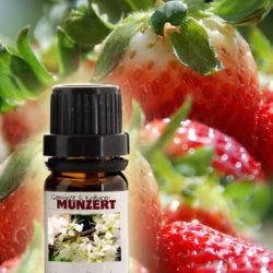 Duftöl Erdbeere von Gewürzversand Munzert