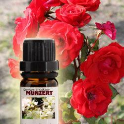 Duftöl Rose von Gewürzversand Munzert